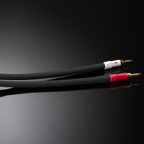 shunyata research speaker cables ΞTRON® series ΞTRON® anacondasp_banana